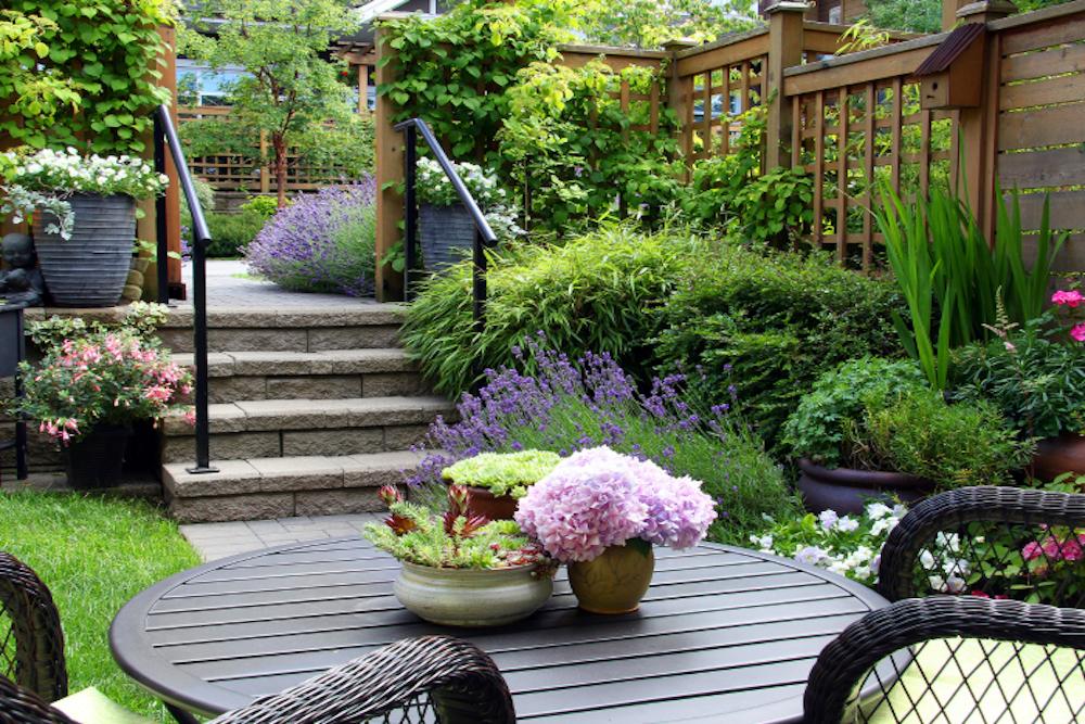 Small garden1